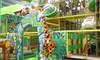 Junglerama Birthday Party for Eight Kids