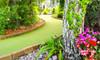 18 Fun-Filled Holes of Mini Golf