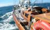 Auckland Harbour Cruise