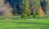 Round of 9-Hole Golf at Wairakei Resort