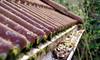Roof & Gutter Inspection incl. Gutter Clean
