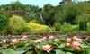 Water Garden Entry & 30% Cafe Discount