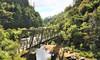 Hauraki Rail Trail Bike Package