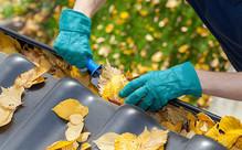 Gutter Clean & Debris Removal