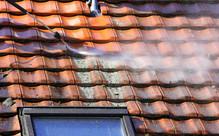 House Weatherboard Prep Package Grabone