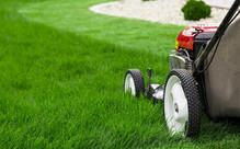 Garden Maintenance incl. Lawn Mowing & Edging