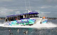 Twilight Fishing Charter