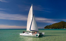 Full-Day Sailing in the Abel Tasman