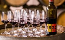 Half Day Waiheke Wine Tour