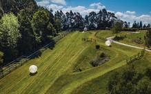 Rotorua Adventure Package