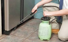 Pest Control Spray Treatment
