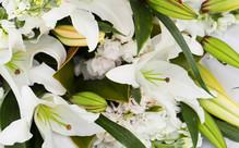 $50 Flower Voucher