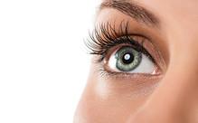 Eyelash Tint, Eyebrow Tint & Shape