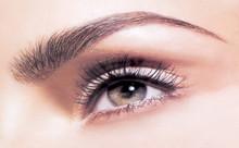 Eyebrow Shape, Eyelash Tint & Eyebrow Tint