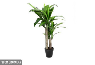 Faux Plant Range - Two Options Available
