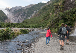 Franz Josef Glacier Guided Eco Tour incl. a Hot Drink & Biscuits for One Person - Options for Two or Four People