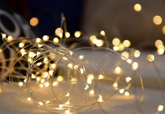 10-Metre USB Seed Lights with Free Delivery