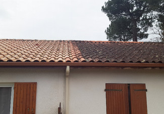 Moss, Mould & Lichen Roof Treatment for a Roof Under 120m² - Options for up to a  360m² Roof