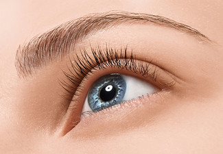 Full Brazilian Wax- Option for an Eye Trio incl. Eyebrow Shape & Tint & Eyelash Tint - Valid at The Northlands Shopping Centre Branch Only