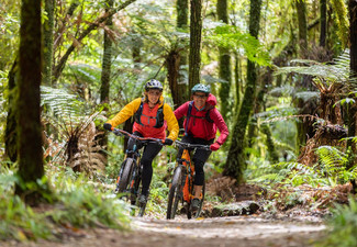 42 Traverse Mountain Bike Trail Adventure Package incl. One Night Prior & One Night After Bike Trail Accommodation, Cooked Breakfast, Two-Course Dinner & Transfers to Trail - Options for One, Two, or Four People - Bring your Own Bike
