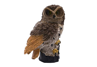 Brown LED Owl Outdoor Light