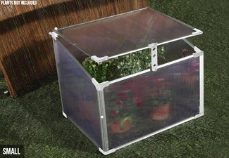 Mini Greenhouse - Two Sizes Available