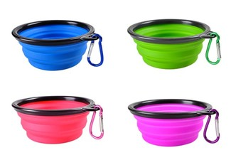 Collapsible Travel Pet Bowl - Four Colours Available