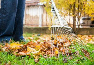Two Hours of Garden Maintenance - Options for up to Eight Hours