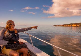 Full Day Island Explorer Boat Trip incl. Lunch & Activities - Options for Adults, Children or Family Pass