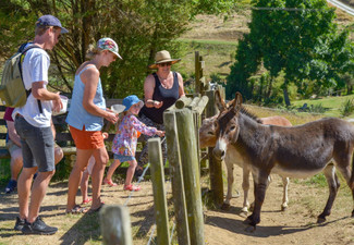 Bullswool Heritage Farm Admission incl. Native Bird Reserve & Museum Access for One Adult - Option for Family of Five