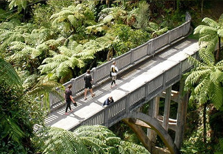 $495 for a for a Child, or $595 for an Adult  Three-Day Whanganui National Park Canoe Trip incl. All Meals & Accommodation