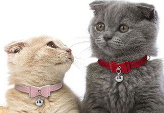 Pet Collar Bow with Bell - Six Colours Available with Free Delivery