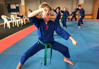 Two Introductory Karate Classes - Options for Children, Adults & Families