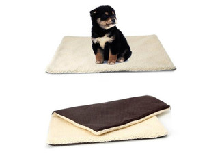 Self-Heating Pet Bed - Option for Two