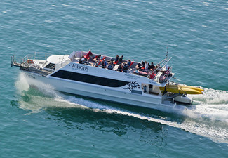 $25 for an Abel Tasman National Park Afternoon Cruise for One Adult incl. One Complimentary Child Ticket (value up to $75)