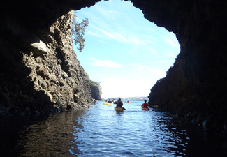 Guided Kayak Day Trip in a Spectacular Part of Northland for One-Person, incl. Lunch - Option for Two People
