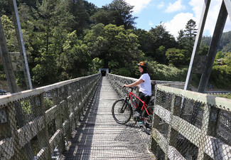 The Hauraki Rail Trail Bike Package incl. Full Day, E-Bike Hire, Pannier, Helmet & Shuttle for One Person - Option For Two People