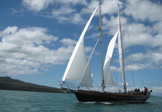Ultimate Auckland Harbour Cruise Aboard The Haparanda Luxury Schooner for One - Option for Two or Four People incl. Bottle of Wine