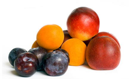 $25 for a 9kg Stone Fruit & Orange Box incl. Delivery