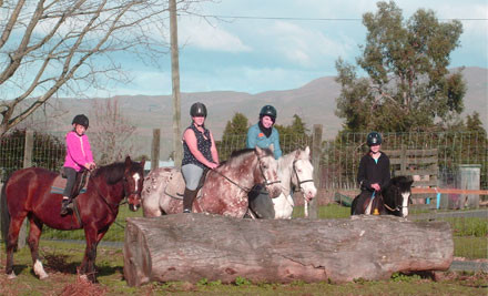 $19 for a Two-Hour Horse Riding Lesson or $38 for Two Two-Hour Horse Riding Lessons (value up to $70)