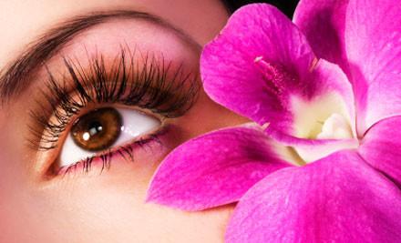 $45 for a Diamond Microdermabrasion Facial & Your Choice of an Eyebrow Shape or Brow Tint (value $128)