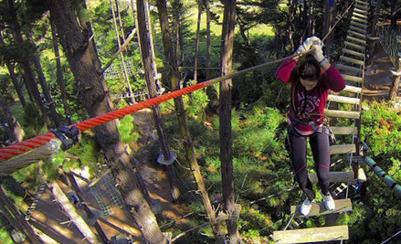 One Admission to Adrenalin Forest Park