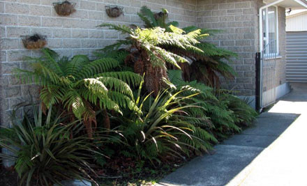 $55 for a One-Hour Landscaping Consultation (value up to $115)