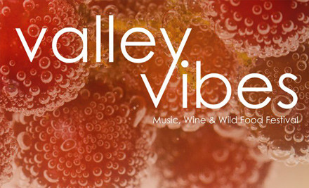 $49 for a Ticket to Valley Vibes Annual Music Festival - February 2nd, 2013 (value $70)
