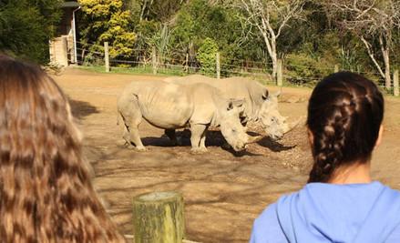 Hamilton Zoo Annual Pass