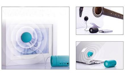 $19 for a Vibration Speaker