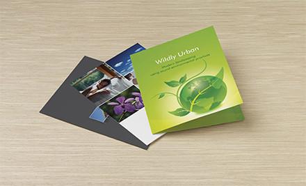 250 custom presentation folders grabone
