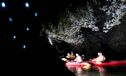 $59 for a Three Hour Glow Worm Adventure Kayak Trip (value $110)