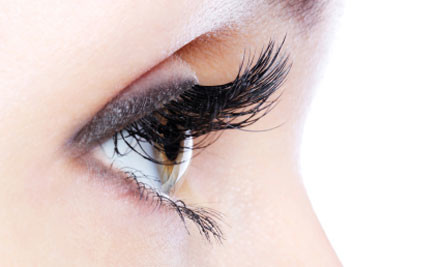 $45 for a Full Set of Glamorous Eyelashes or $90 to incl. an Infill (value $90)