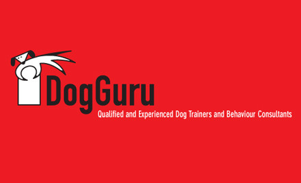 $69 for a Five-Week Beginner's Dog Training Course (value $169)